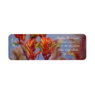 Etiqueta Planta de deserto vermelha e verde