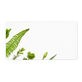 Etiqueta Plantas verdes isoladas no fundo branco