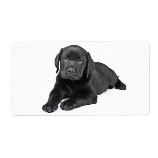 Etiqueta preta do cão de filhote de cachorro de etiqueta de frete