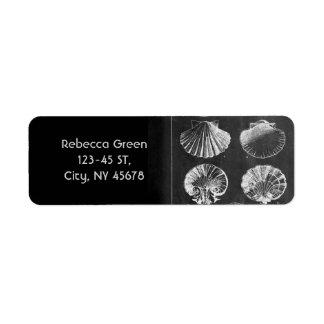 Etiqueta seashells botânicos franceses litorais do quadro