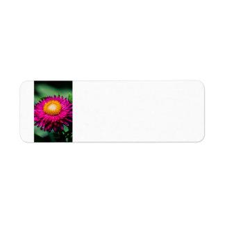 Etiquetas de endereço da flor etiqueta endereço de retorno