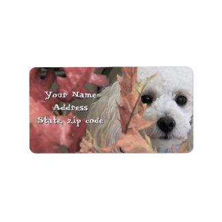 Etiquetas de endereço do filhote de cachorro da etiqueta de endereço