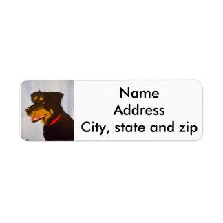 Etiquetas de endereço do remetente. rot.mix etiqueta endereço de retorno