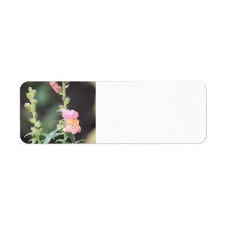 Etiquetas de endereço - flor etiqueta endereço de retorno