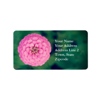 Etiquetas de endereço florais da flor cor-de-rosa etiqueta de endereço