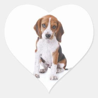 Etiquetas do cumprimento do coração do cão de adesivo coração