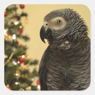 Etiquetas do Natal do papagaio