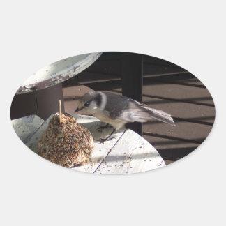 Etiquetas do Oval de Jay cinzento e de Bell Adesivo Oval