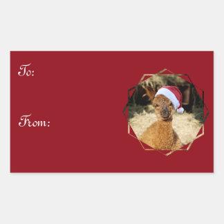 Etiquetas do presente do Natal da alpaca Adesivo Retangular