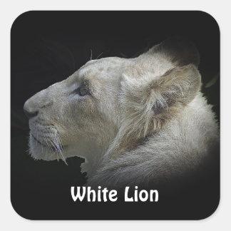 Etiquetas grandes dos animais selvagens do LEÃO Adesivo Quadrado