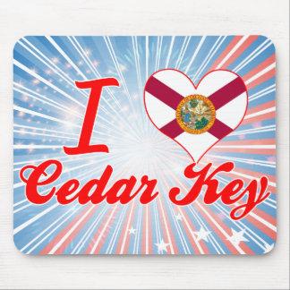 Eu amo a chave do cedro, Florida Mousepad