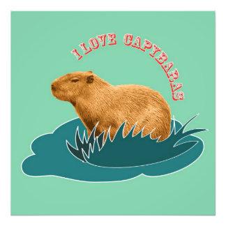 Eu amo Capybaras Impressão De Foto