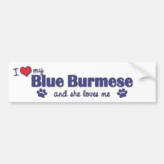Eu amo meu birmanês azul (o gato fêmea) adesivo para carro