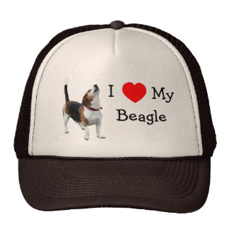 Eu amo o coração meu chapéu bonito do cão do lebre boné