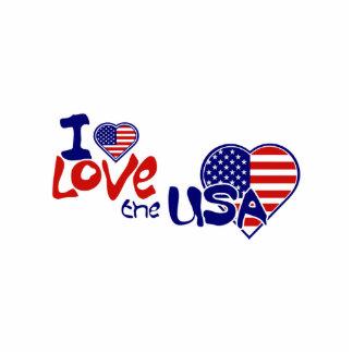 Eu amo o Pin americano do coração dos EUA Escultura De Fotos