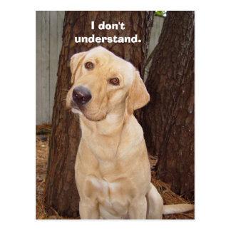 Eu não compreendo cartão postal