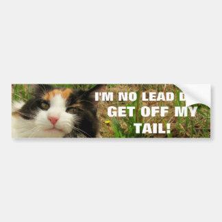 Eu não sou nenhum gato Meme do cão da ligação Adesivo De Para-choque