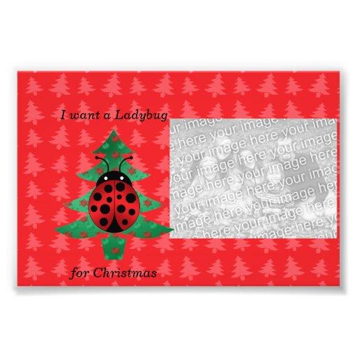 Eu quero um joaninha para árvores de Natal vermelh Foto Arte