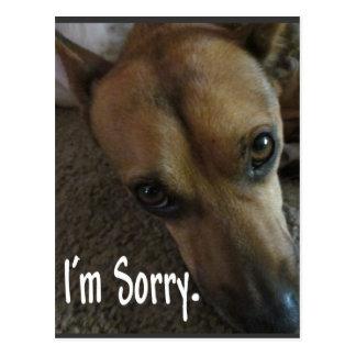 Eu sou cão triste pesaroso cartão postal