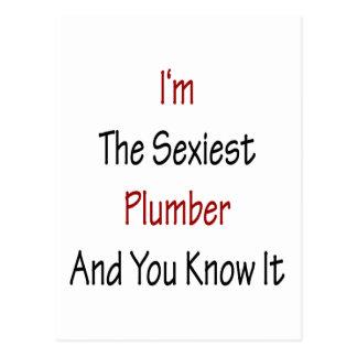 """Eu sou o canalizador o mais """"sexy"""" e você sabe-o cartão postal"""