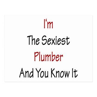 Eu sou o canalizador o mais sexy e você sabe-o cartoes postais