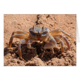 Eu ver o - crab no fim da praia acima cartão comemorativo