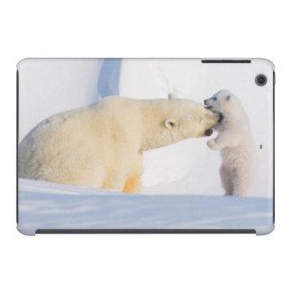 EUA, Alaska, inclinação norte, 1002 áreas 4 Capa Para iPad Mini Retina