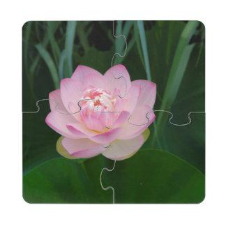 EUA, Kansas, água cor-de-rosa Lilly Porta Copo Quebra-cabeça
