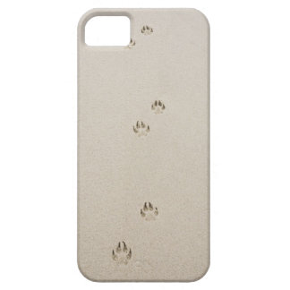 EUA, Massachusetts, a trilha do cão na areia Capa Barely There Para iPhone 5