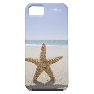 EUA, Massachusetts, Cape Cod, Nantucket, fim Capas Para iPhone 5