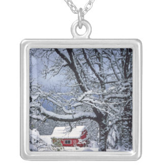 EUA, Oregon, Clackamas County. Cobrir de neve Colar Banhado A Prata
