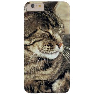 EUA, Utá, recife NP do Capitólio. Gato de gato Capas iPhone 6 Plus Barely There