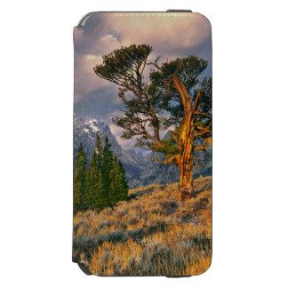 EUA, Wyoming, Teton grande NP. O nascer do sol Capa Carteira Incipio Watson™ Para iPhone 6