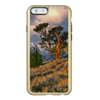 EUA, Wyoming, Teton grande NP. O nascer do sol Capa Incipio Feather® Shine Para iPhone 6