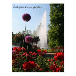 Europas Rosengarten Cartão Postal