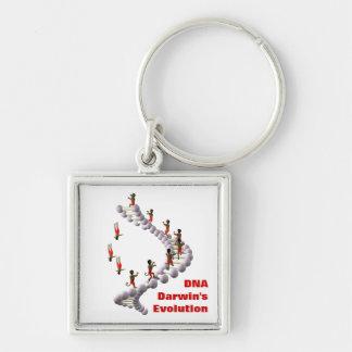 Evolução do ADN Darwin Chaveiro Quadrado Na Cor Prata