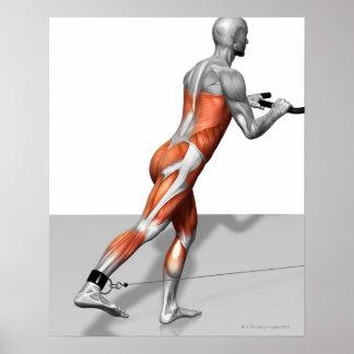 Exercício do patinador do cabo poster