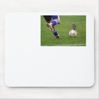 f-Funny-Cat-3539 Mouse Pad