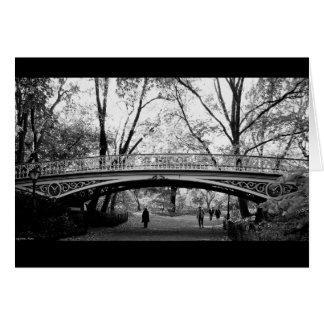 Faíscas de KIW: Cartão do Central Park