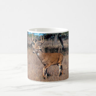 Fanfarrão dos cervos caneca de café