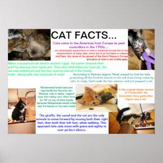 Fatos históricos do gato poster