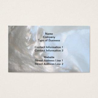 Feche acima da foto. Imagem de um Seashell. Cartão De Visitas