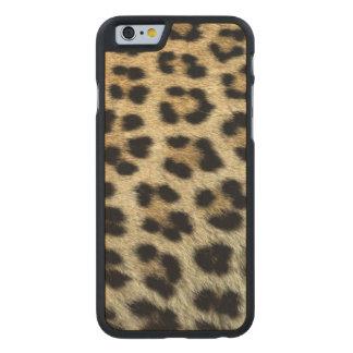 Feche acima dos pontos do leopardo, África