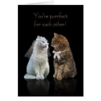 Felicitações Wedding/noivado para amantes do gato Cartão Comemorativo