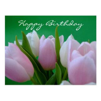 Feliz aniversario - cartão das tulipas cartão postal