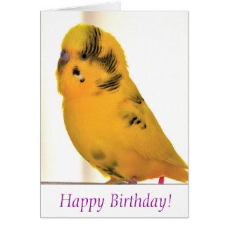 Feliz aniversario de Tweetie Cartão Comemorativo