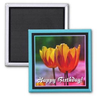 Feliz aniversario! Vermelho amarelo das tulipas Ímã Quadrado