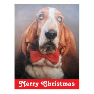 Feliz Natal Basset Hound do cartão Cartão Postal