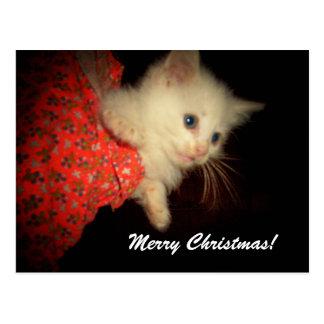 Feliz Natal! Cartão do gatinho Cartão Postal