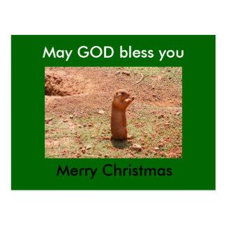Feliz Natal, deus abençoe de maio você Cartão Postal
